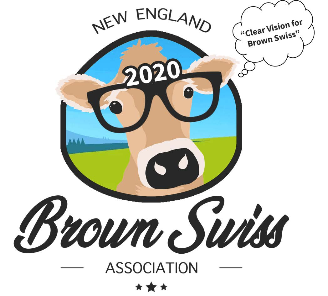 2020NewEnglandConventionlogo
